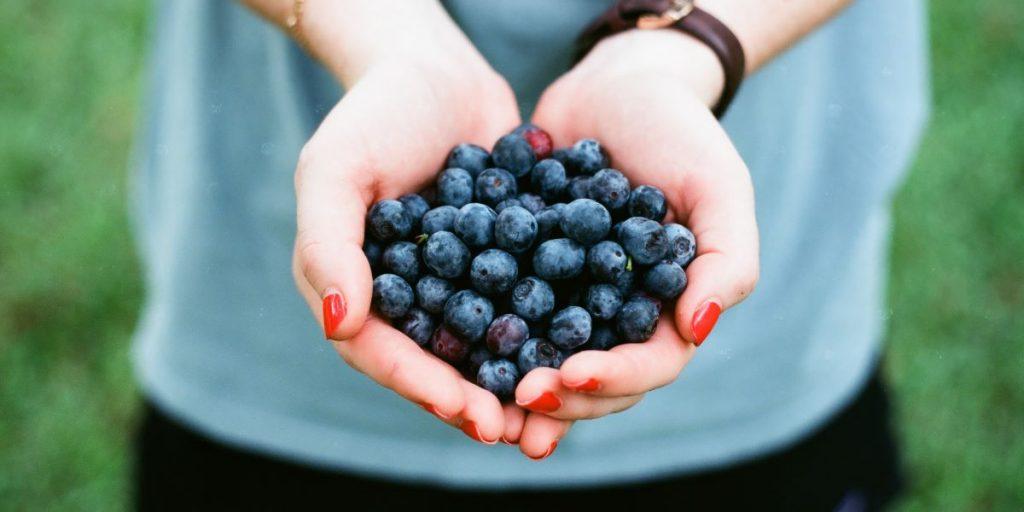 cuantos arandanos hay que comer al dia