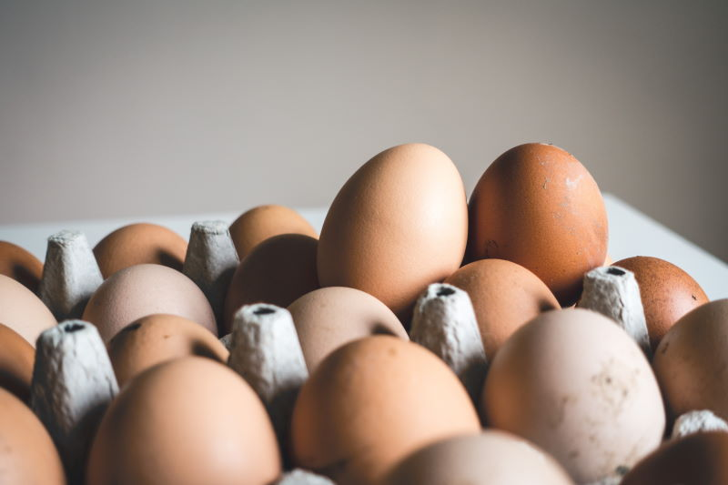 properties and benefits of eggs