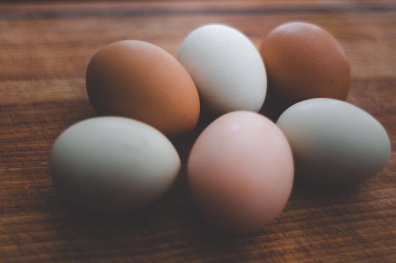 huevos camperos
